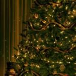 Los colores de la Navidad 25