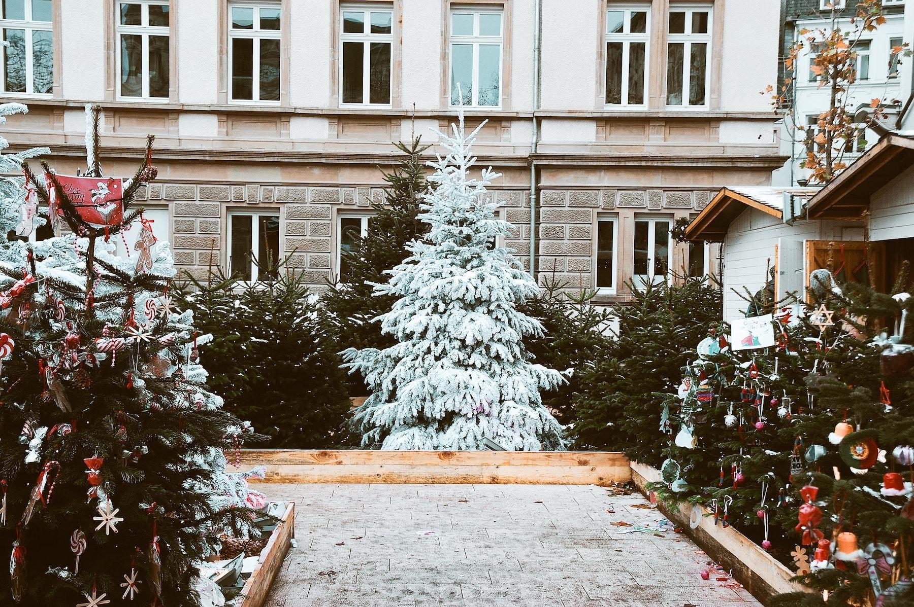 Blanca Navidad la canción más famosa 3
