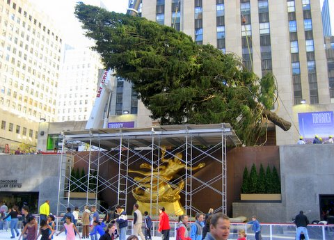 arbol rockefeller center3