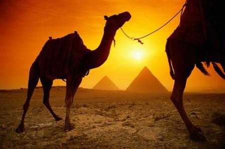 Celebración Navideña coptos egipcios