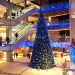 Valencia en Navidad 2