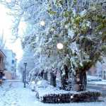 Nieva en Herencia