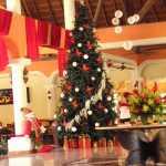 Hotel Gran Palladium Riviera Maya Mexico decorado de Navidad