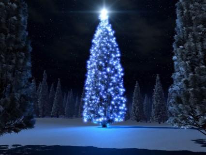 Historia del árbol de Navidad 6