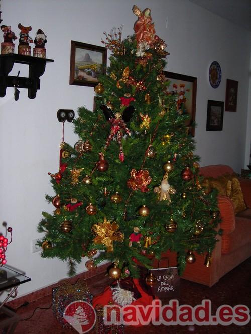 Navidad en Valencia 2011, por Diego Jaramillo 6