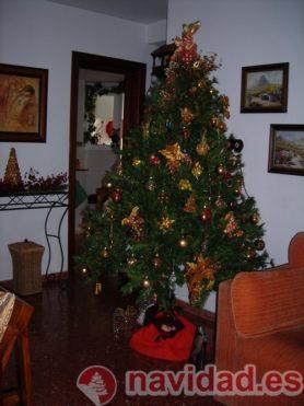 Navidad en Valencia 2011, por Diego Jaramillo 7