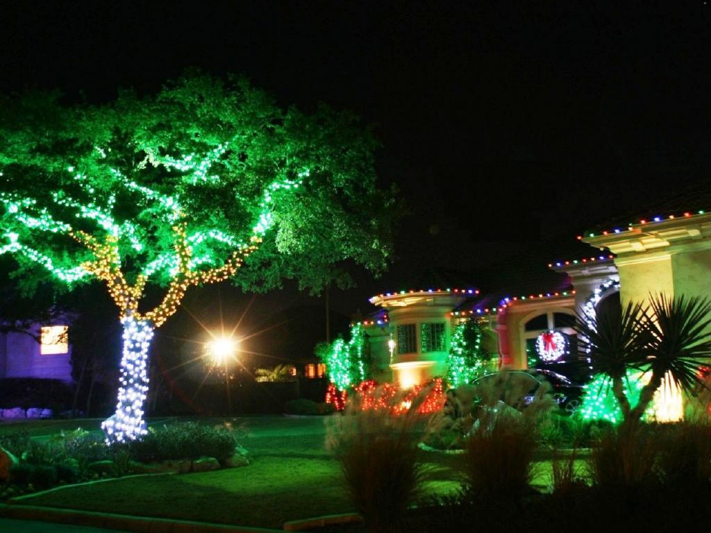 decoracion-navidena-con-luces-en-el-jardin