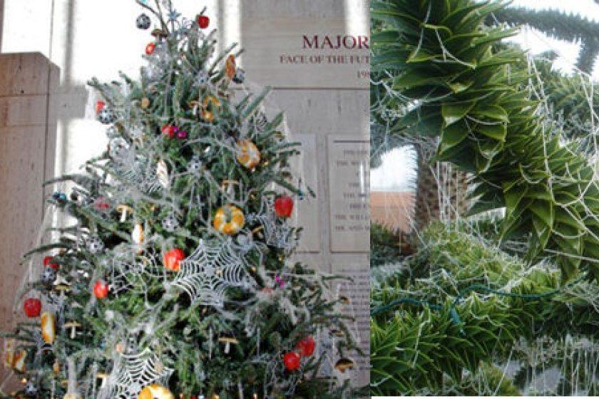 costumbres navideñas mas extrañas - ucrania