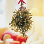 muérdago de Navidad- colgado del techo