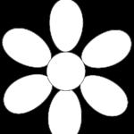 flor-margarita