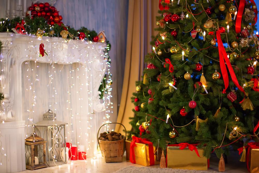 plantas para Navidad - abeto