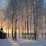 Navidad en Finlandia - paisajes nevados