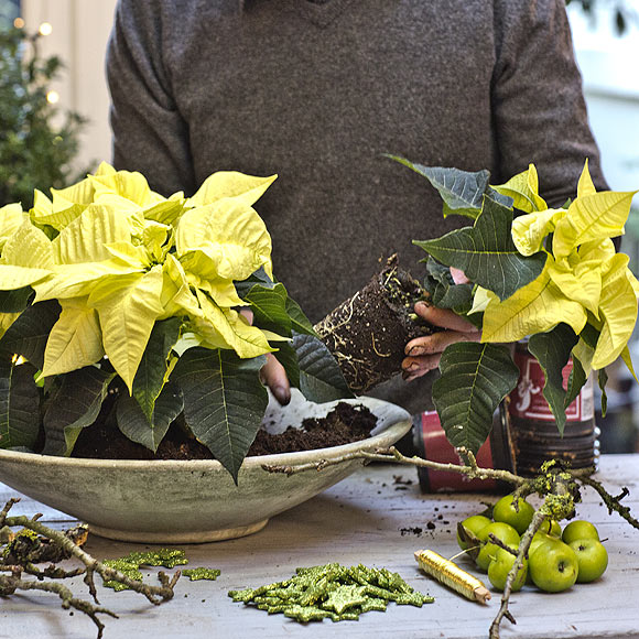 arreglos de flores para Navidad - amarillo