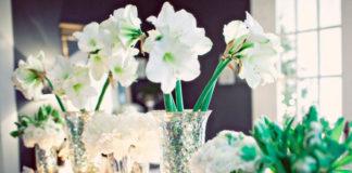 arreglos de flores para Navidad en blanco