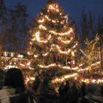 Navidad en Hungría - Árbol