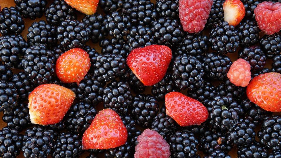 frutos-rojos