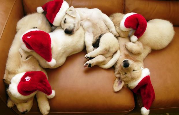tradiciones-navidenas-del-mundo-8