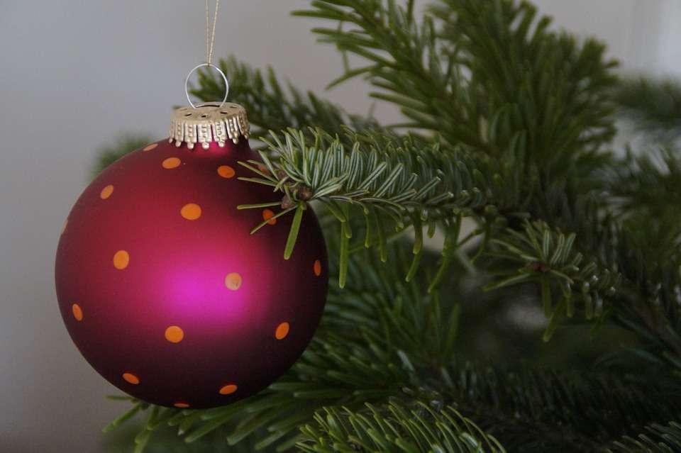 Como se preparan las empresas navideñas para la proxima campaña 4