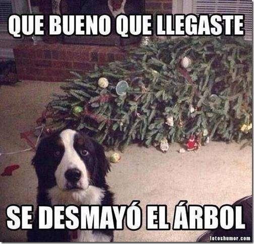 Las imágenes más graciosas para felicitar la Navidad y el Año Nuevo 17
