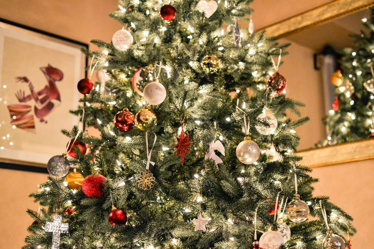 Como elegir y decorar tu árbol de Navidad 1