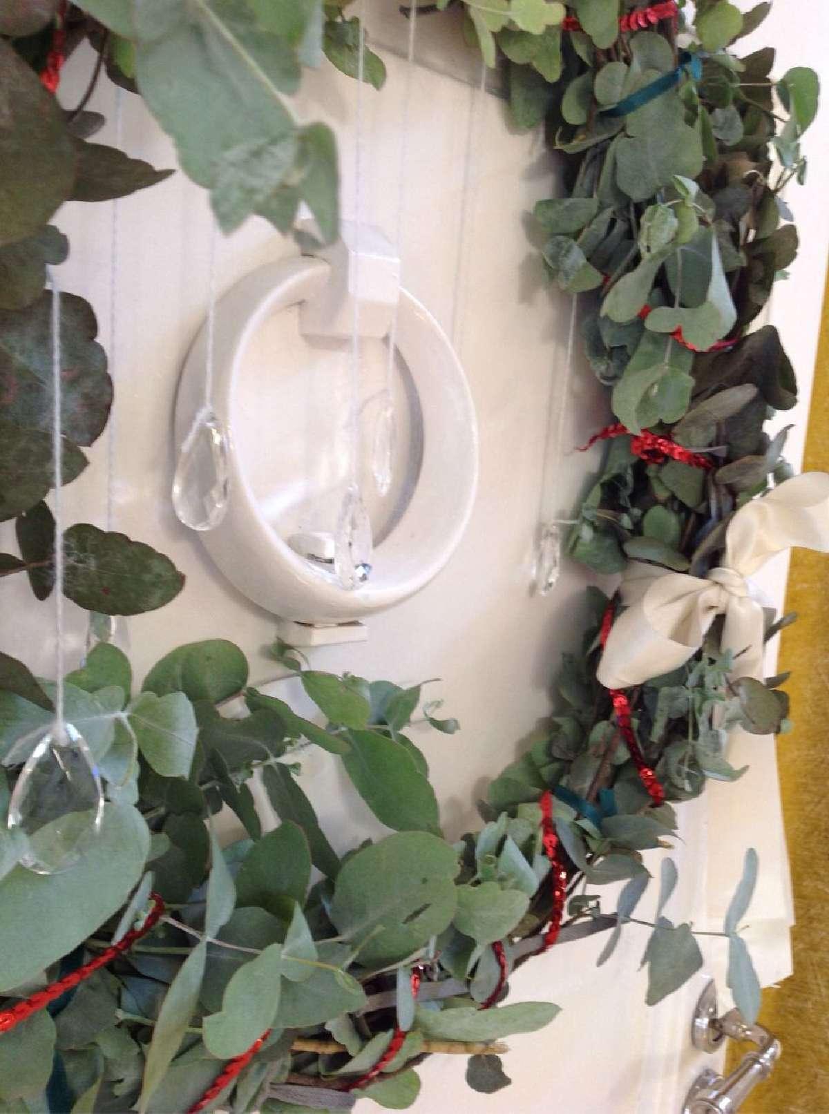 Historia y significado de las plantas navideñas 8