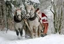 Papa Noel, Reyes Magos desvelar