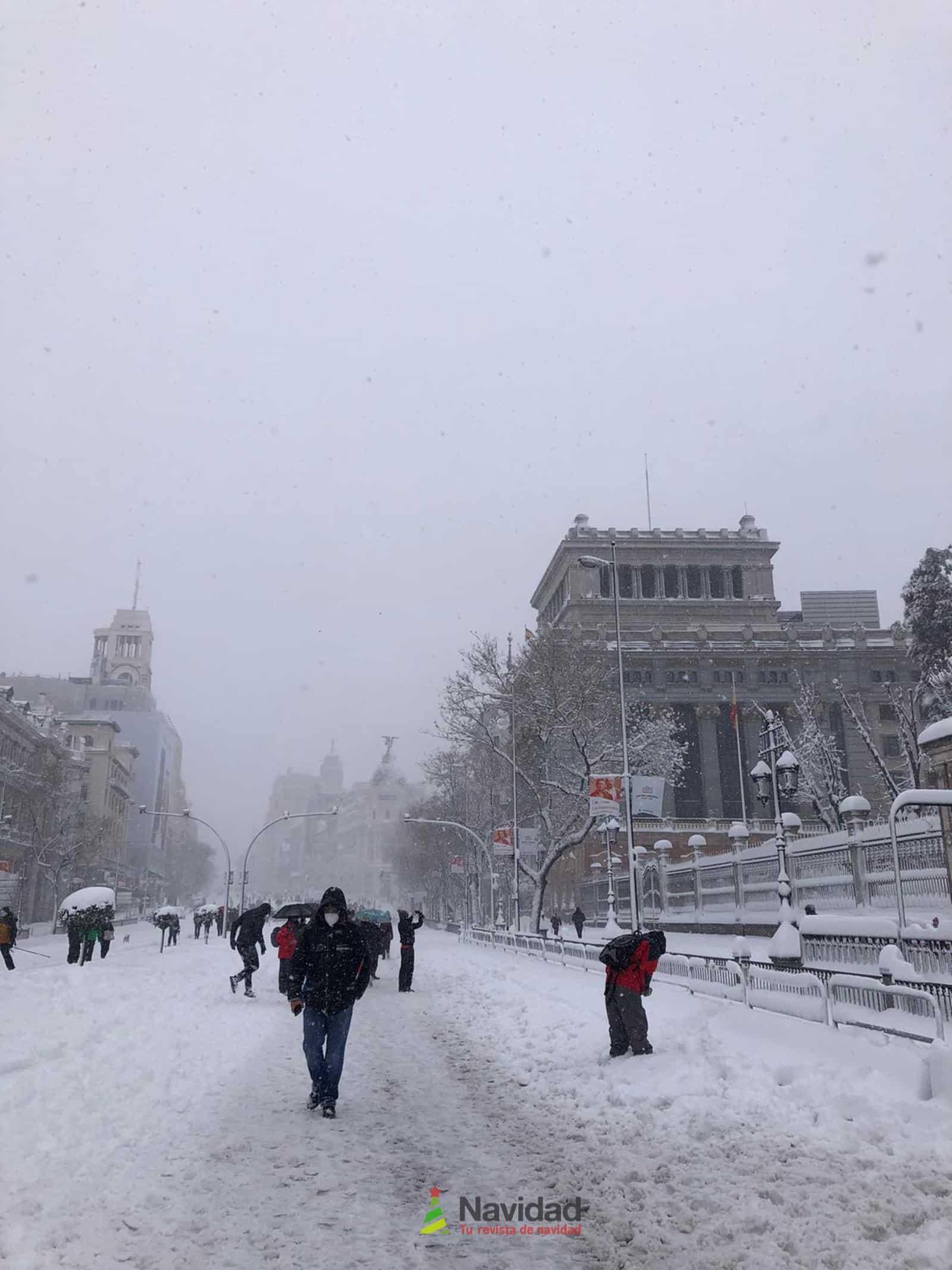 Fotografías de la nevada de enero en Madrid (España) 166