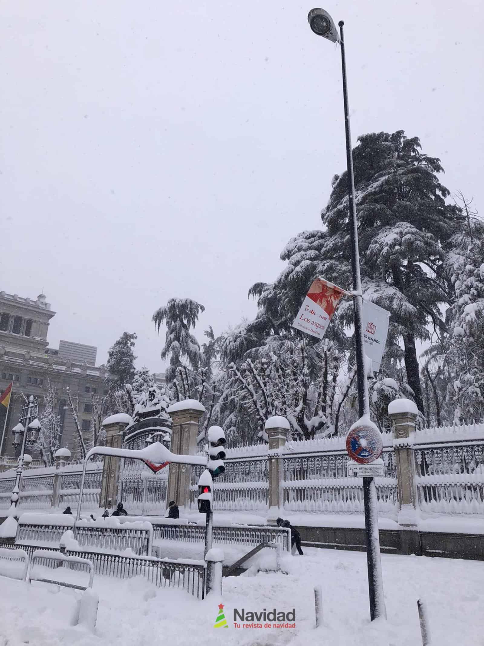 Fotografías de la nevada de enero en Madrid (España) 167