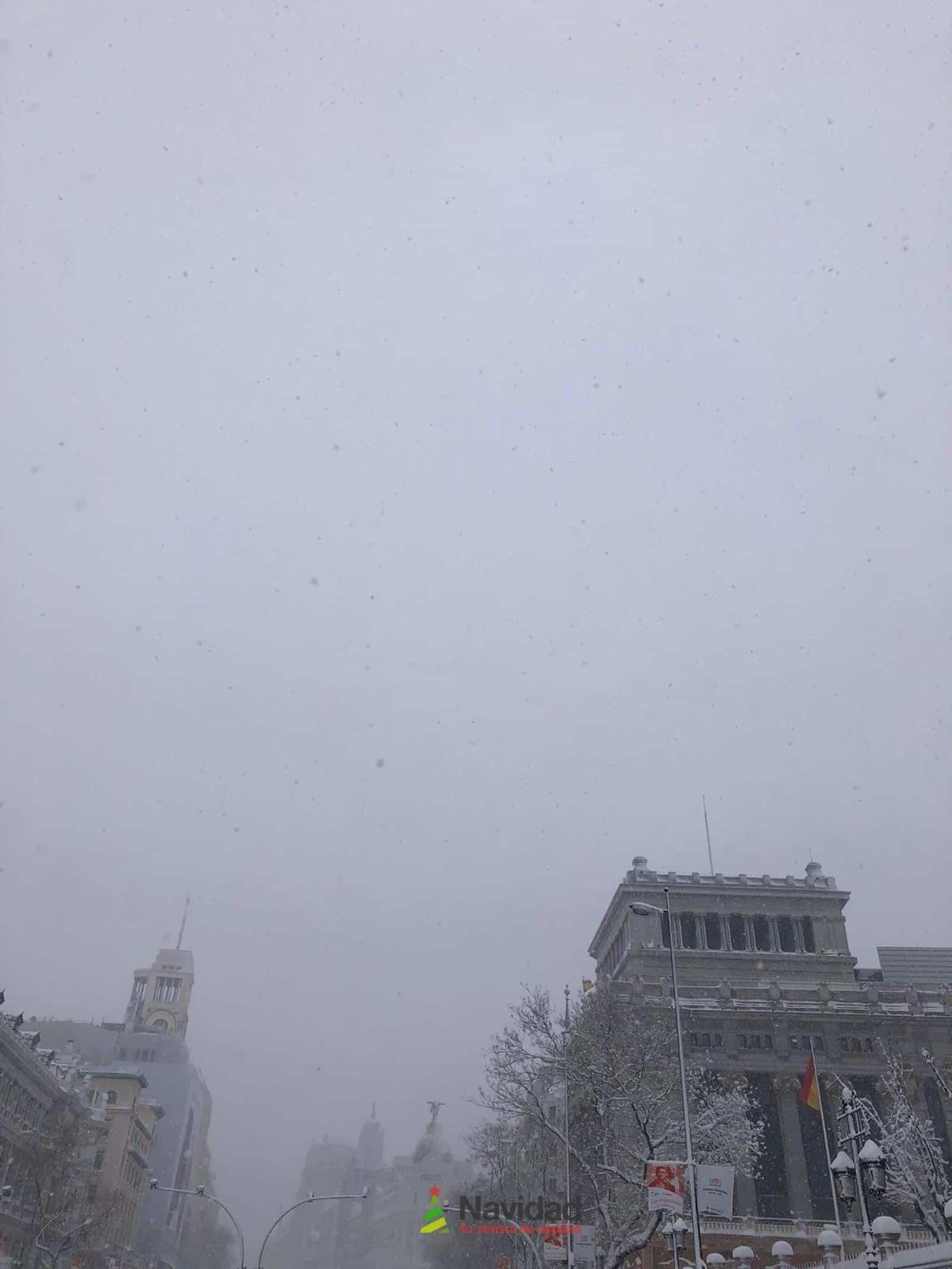 Fotografías de la nevada de enero en Madrid (España) 168