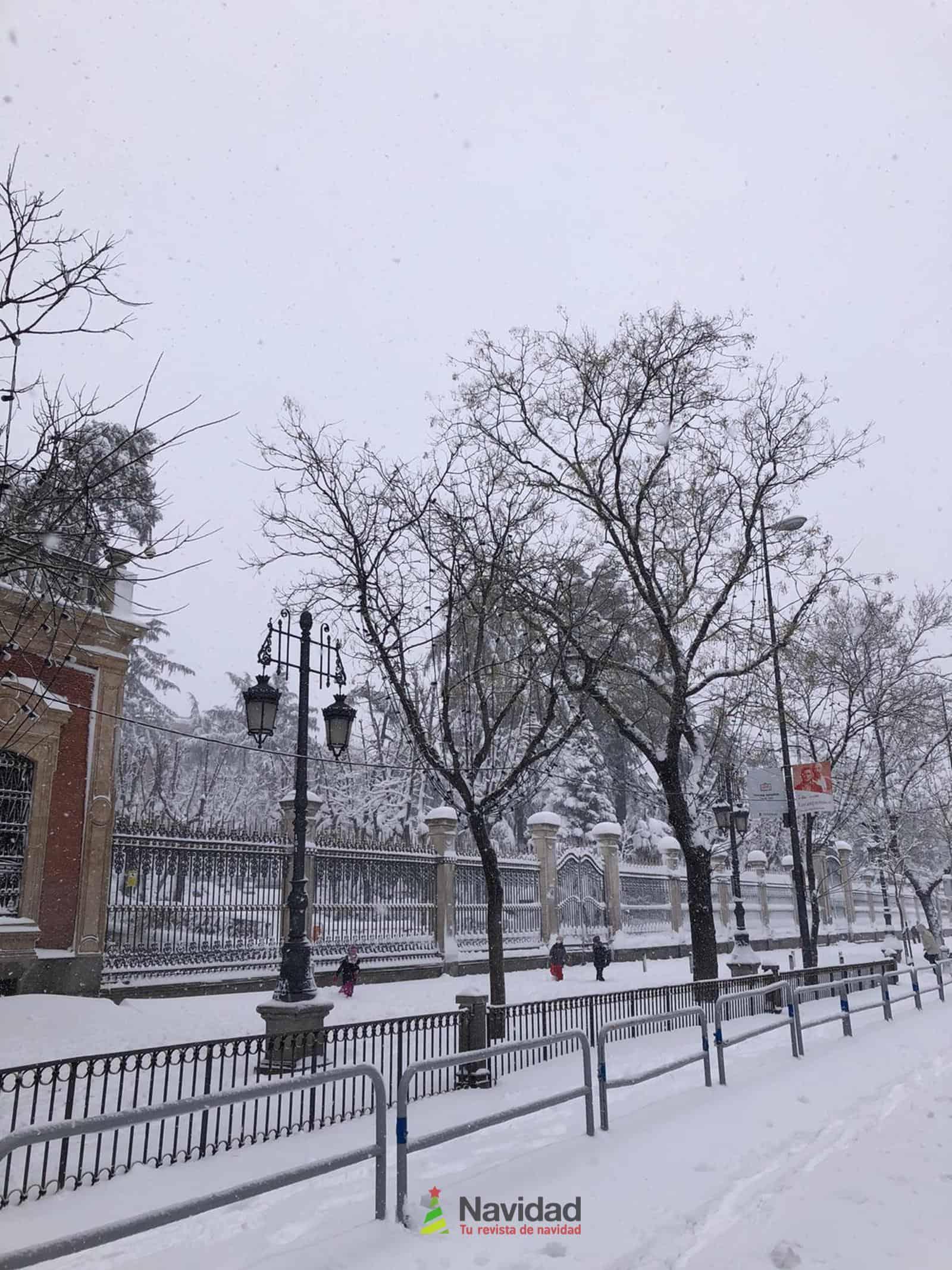Fotografías de la nevada de enero en Madrid (España) 169