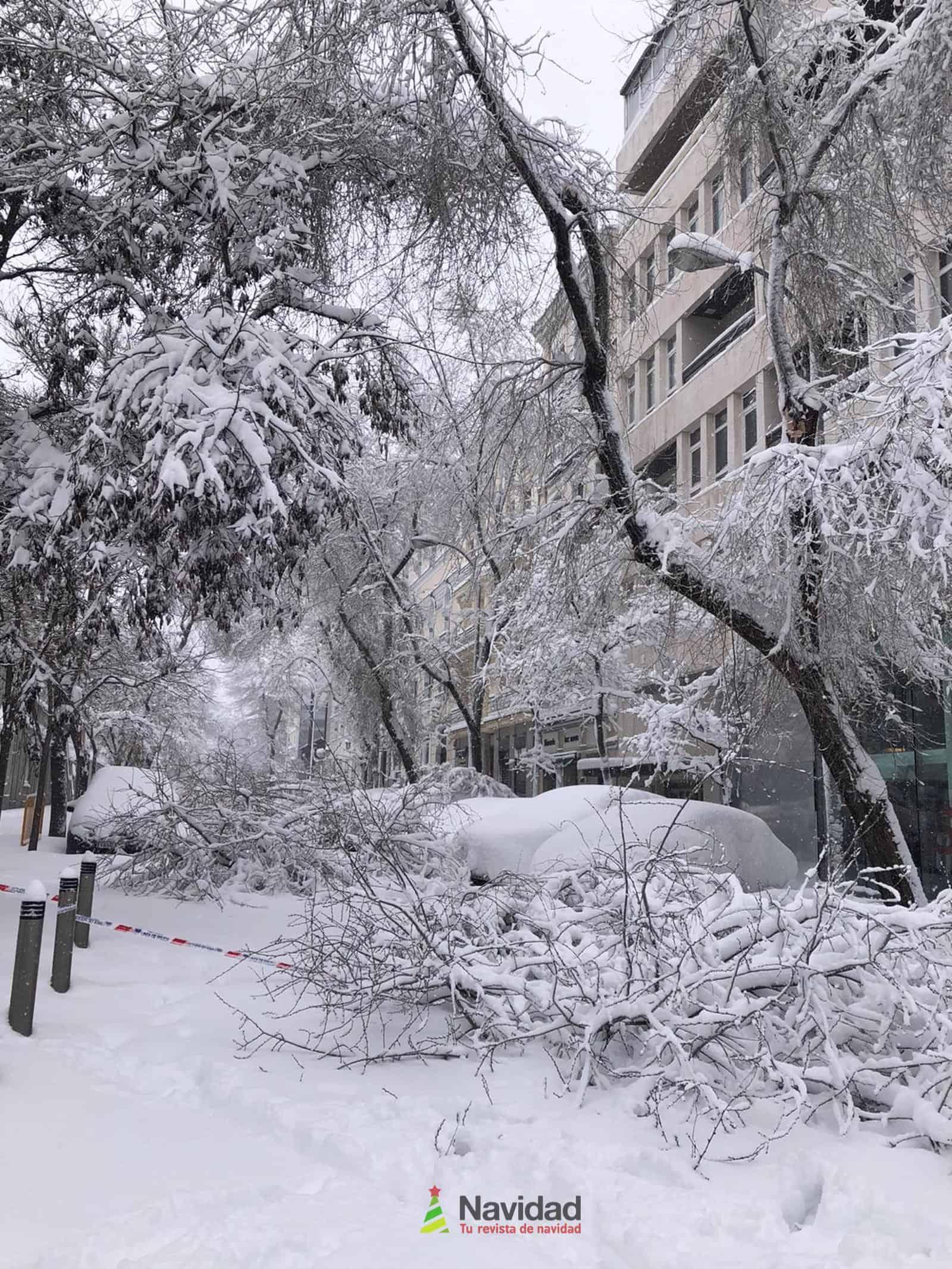 Fotografías de la nevada de enero en Madrid (España) 158