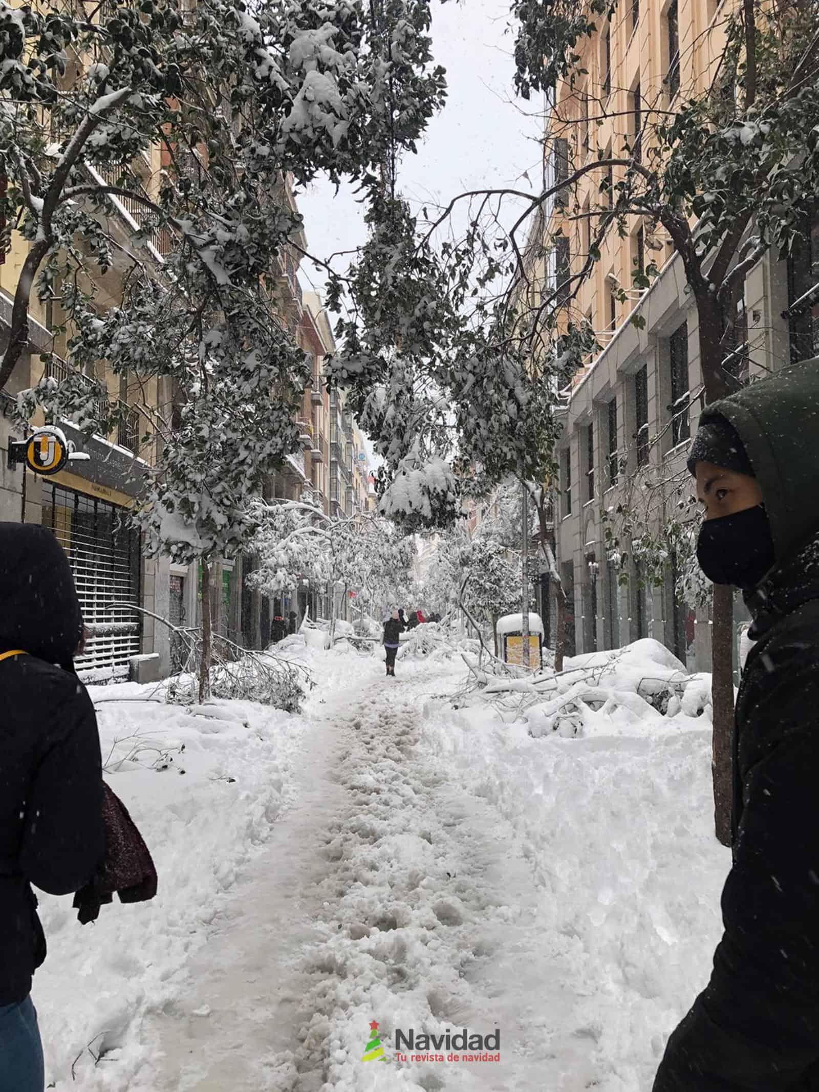 Fotografías de la nevada de enero en Madrid (España) 178