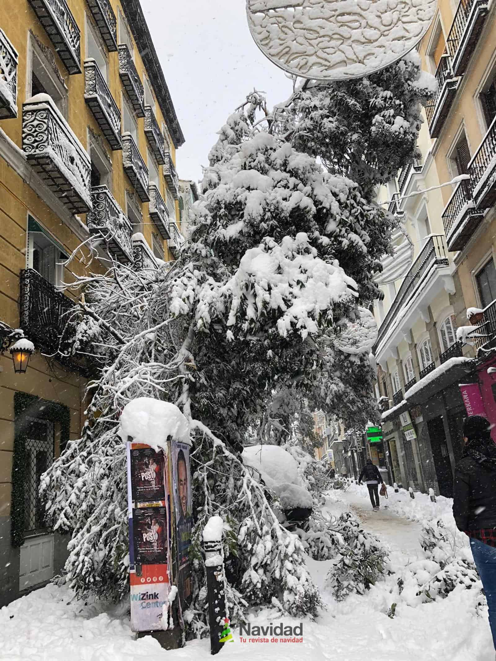 Fotografías de la nevada de enero en Madrid (España) 180