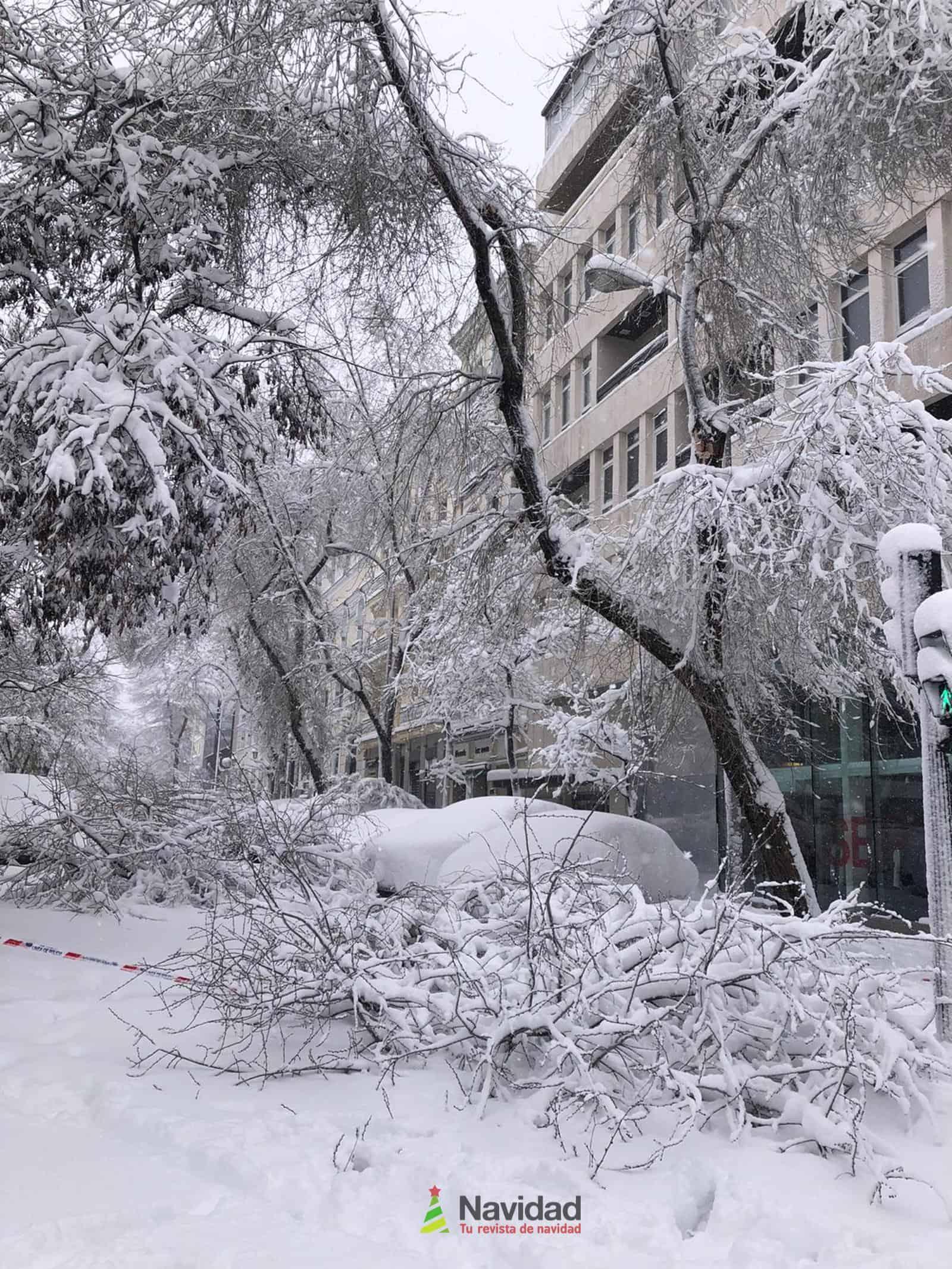 Fotografías de la nevada de enero en Madrid (España) 159