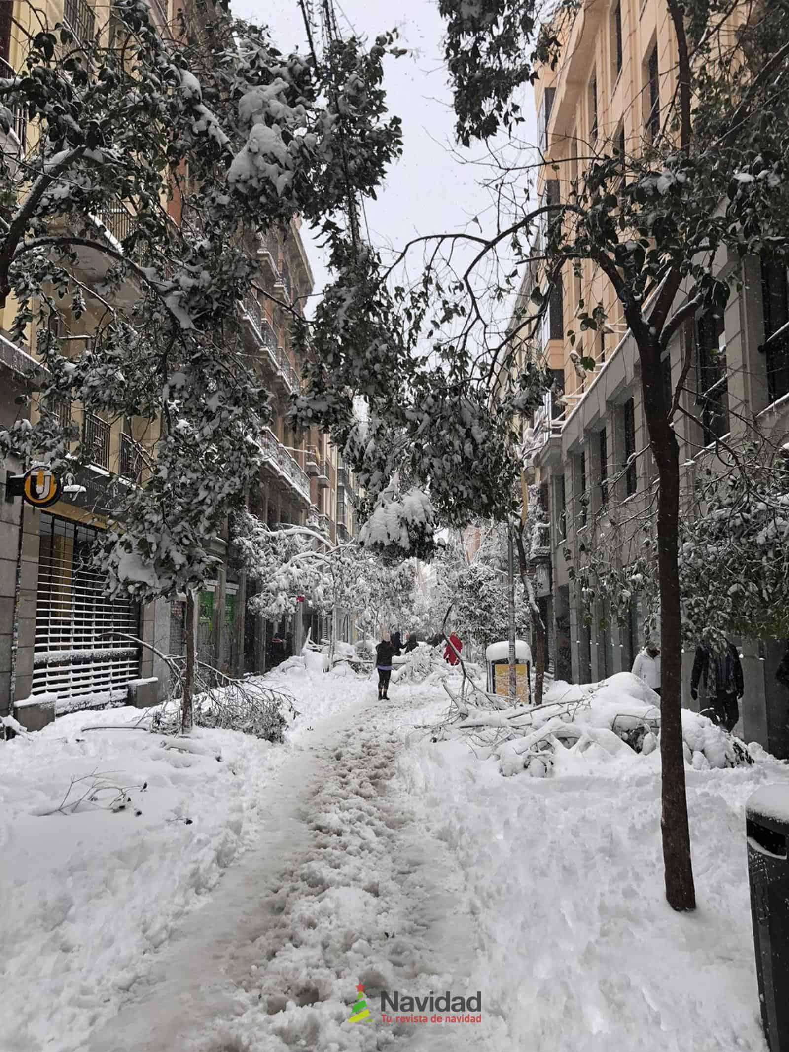 Fotografías de la nevada de enero en Madrid (España) 194