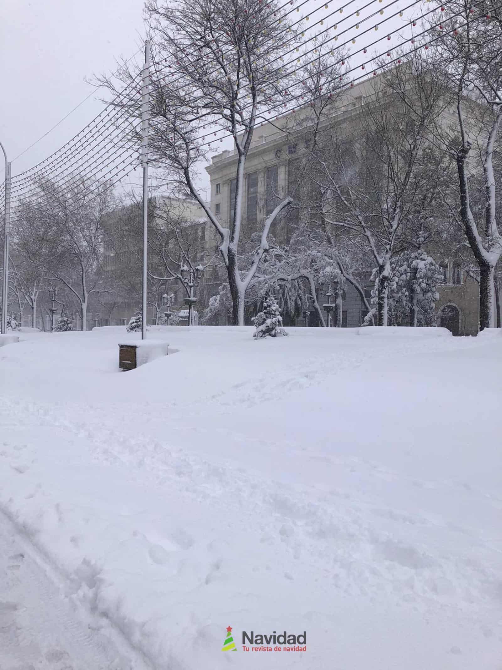 Fotografías de la nevada de enero en Madrid (España) 162