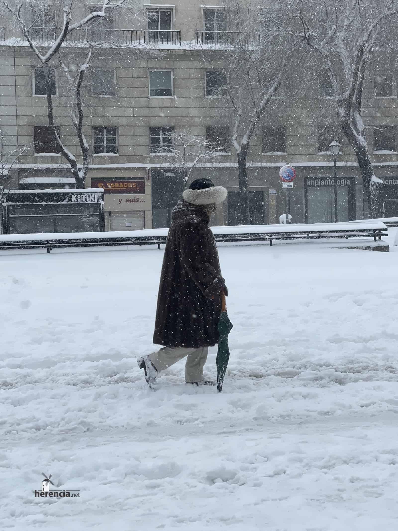 Fotografías de la nevada de enero en Madrid (España) 208