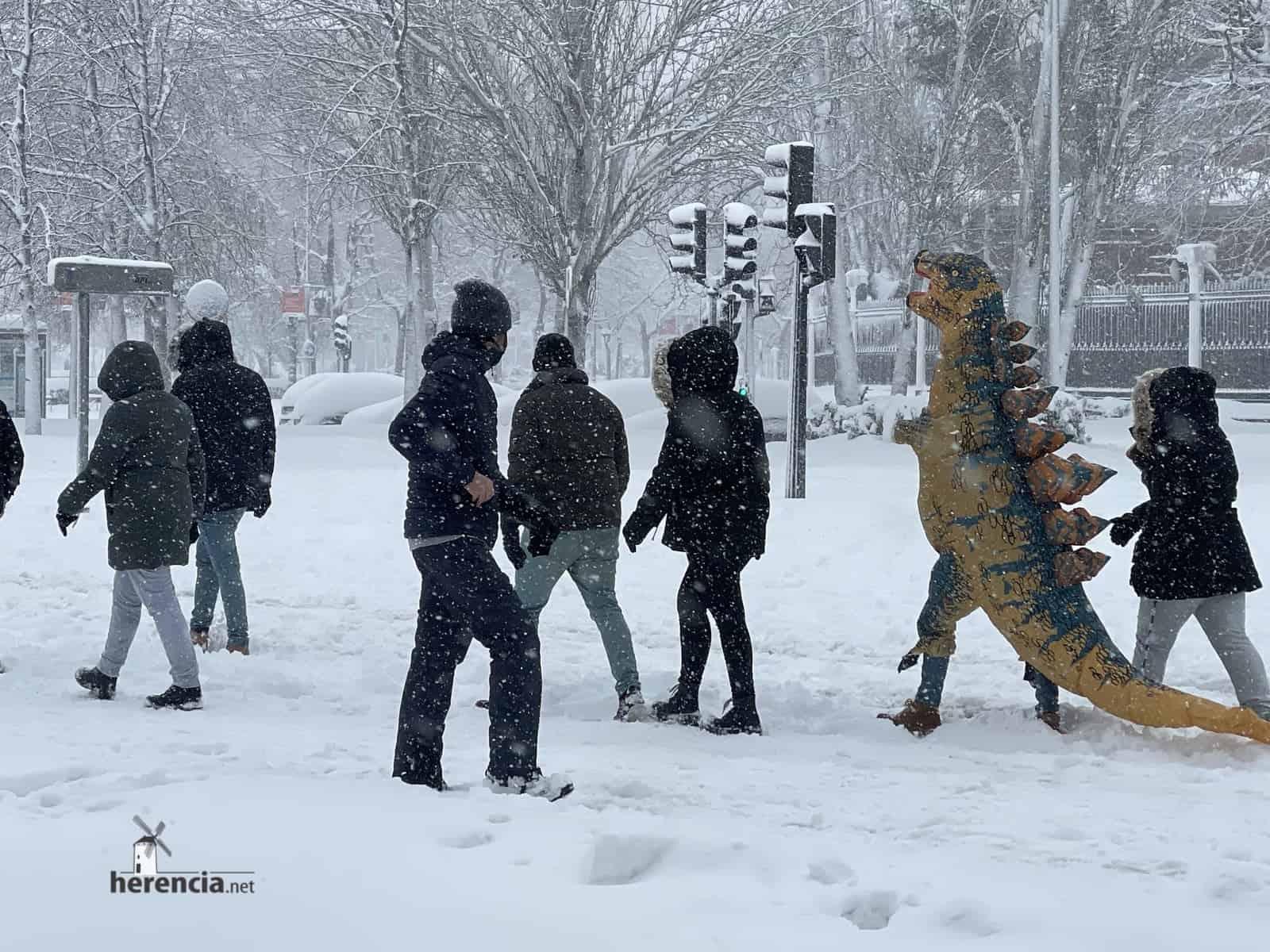Fotografías de la nevada de enero en Madrid (España) 209
