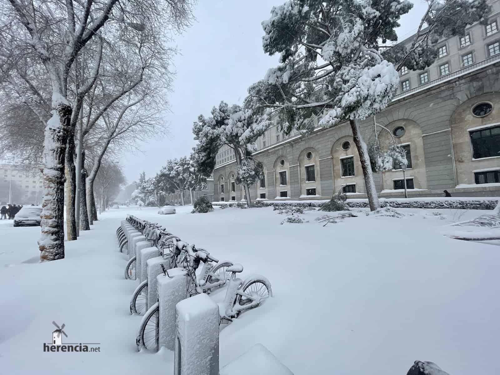 Fotografías de la nevada de enero en Madrid (España) 210