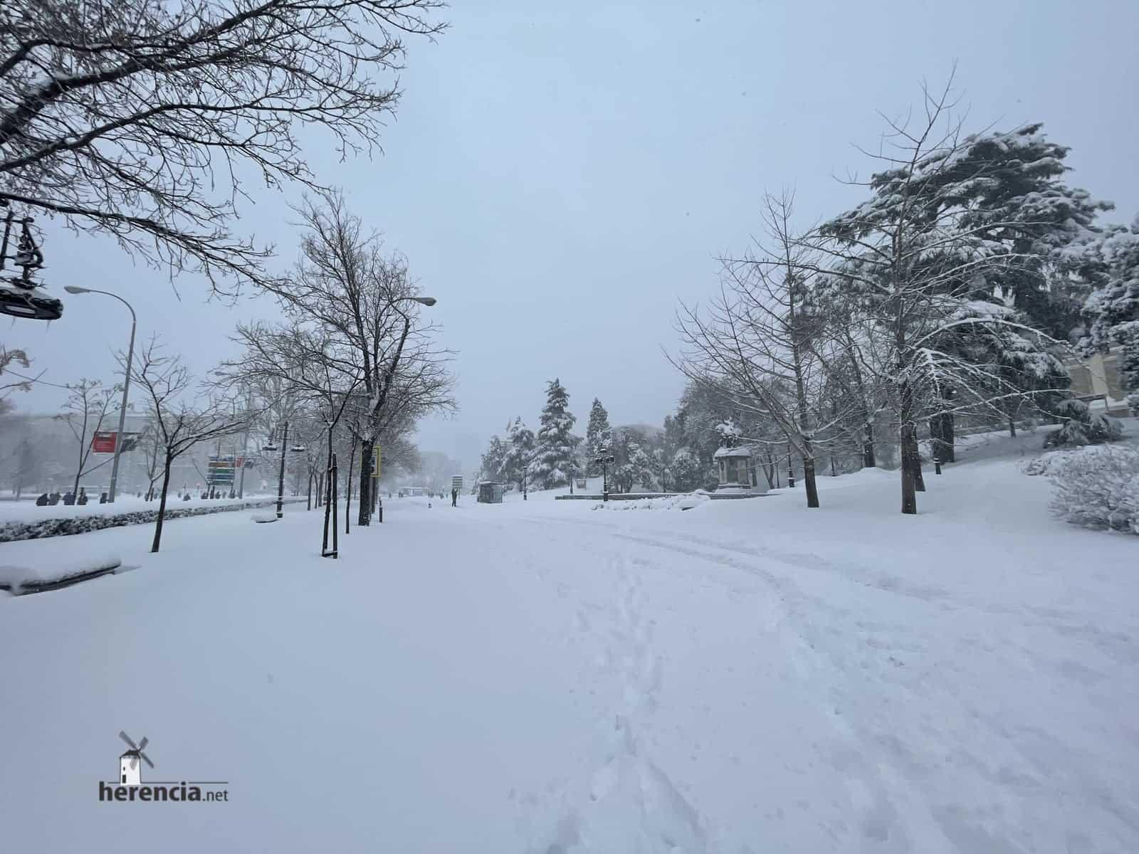 Fotografías de la nevada de enero en Madrid (España) 221