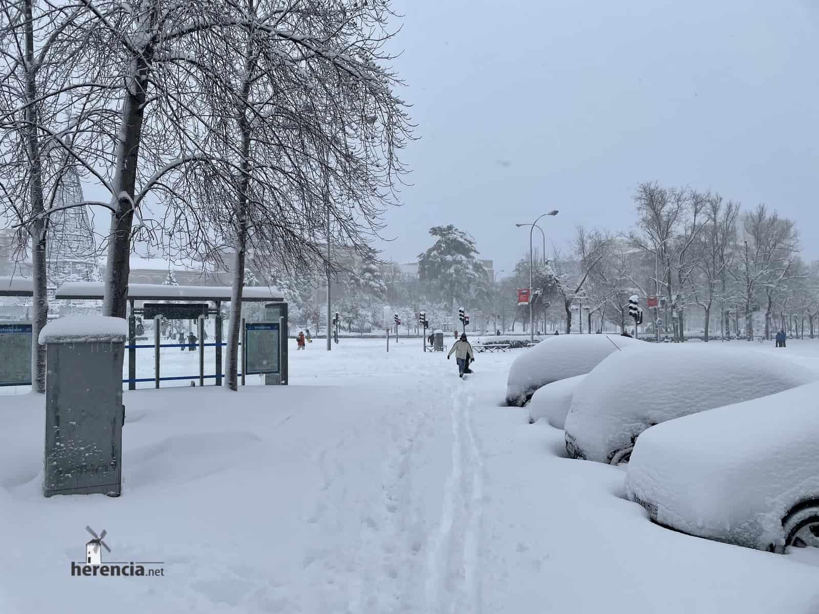 Fotografías de la nevada de enero en Madrid (España) 227