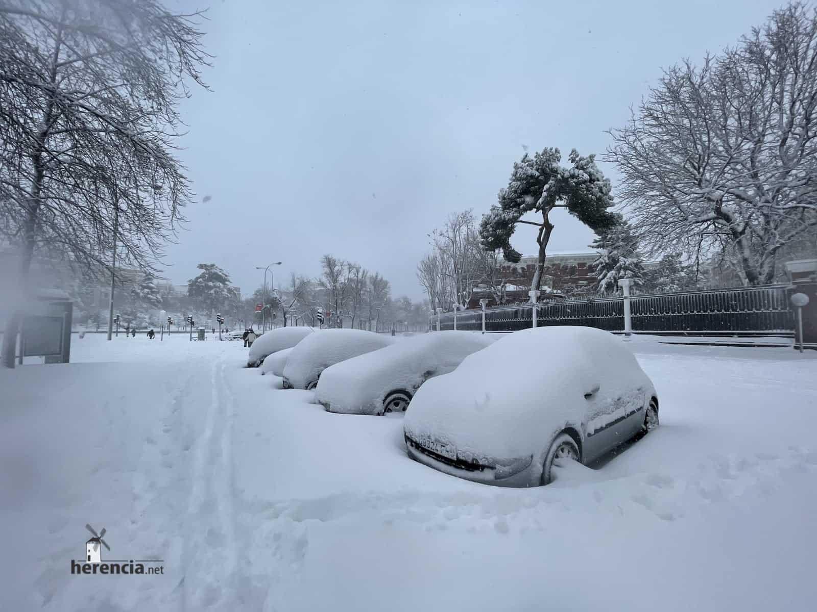 Fotografías de la nevada de enero en Madrid (España) 228