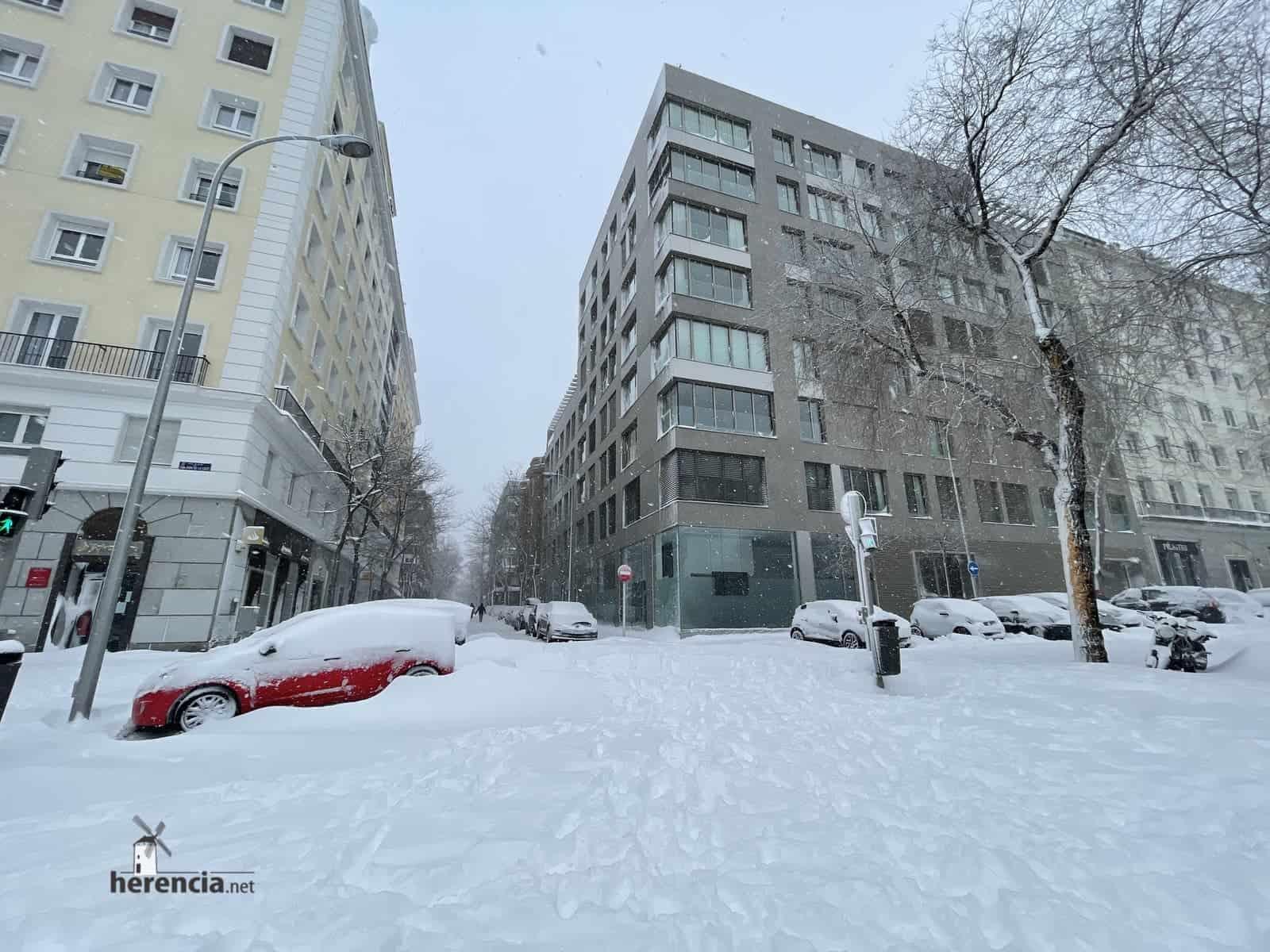 Fotografías de la nevada de enero en Madrid (España) 230